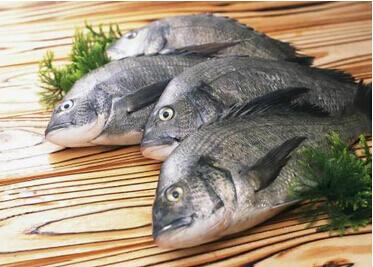 研究发现爱吃鱼的人患抑郁风险低