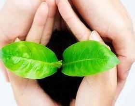 独家对话巴马亦舒堂:绿色长寿食品重在改善亚健康