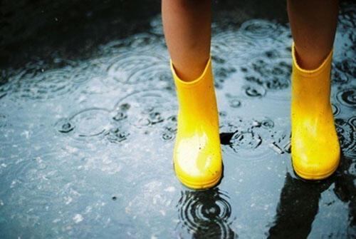 体内有湿气,如何健脾祛湿