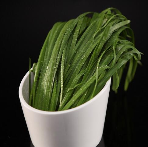 5种对减肥有帮助的蔬菜 你知道吗