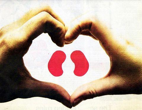 这些身体问题可能和肾不好有关,要注意护肾