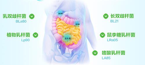 拉肚子腹泻怎么办?吃点益生菌好得快