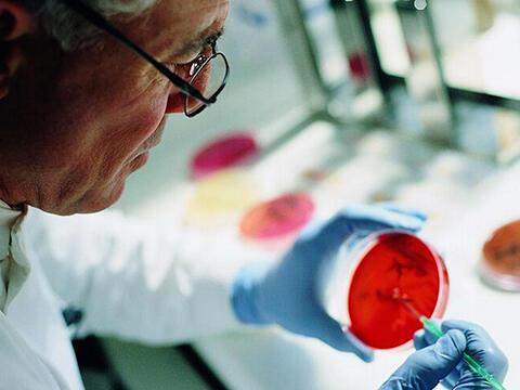 研究:未来可望验血揪出5种癌症