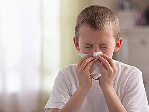 换季鼻子过敏严重,3招找出过敏元凶