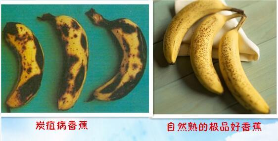 有黑点的香蕉居然这么厉害,你还舍得扔吗