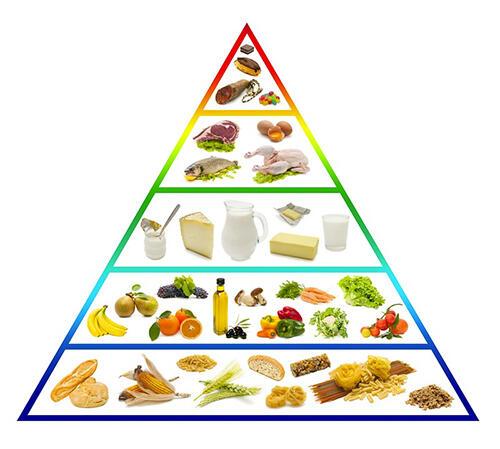 想饿死癌细胞?20%的癌症病人死于营养不良