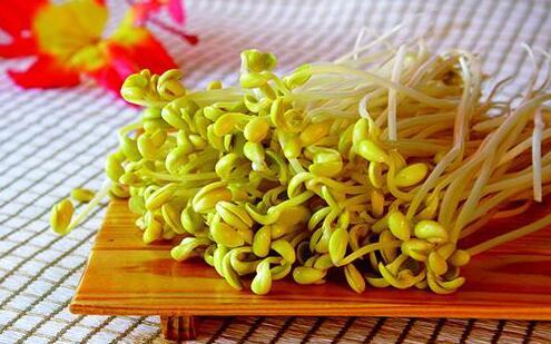 夏季养生:豆芽菜清热利湿解毒