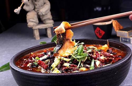 为什么全世界的饮食指南都鼓励吃鱼?