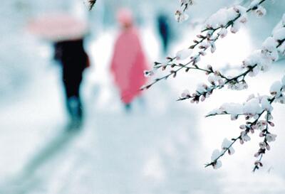 小雪节气后适合吃温润益肾的食物