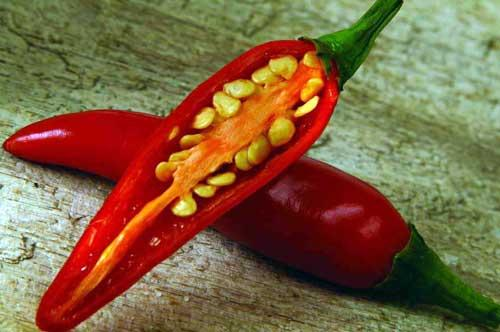 养生:多吃6种辣味食物,保你健康过冬