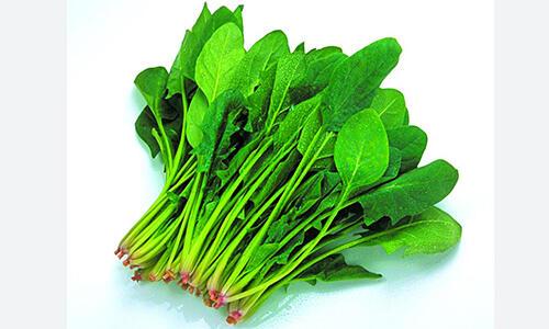 这7种蔬菜家里经常煮,竟然有毒!