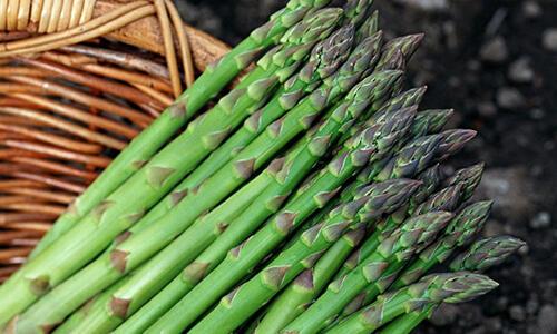 夏天便秘怎么办?7种食物助你排便通畅、养出好气色