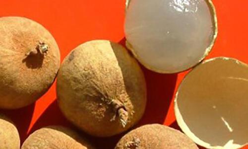 夏天常吃的7种水果,功效你都清楚吗?