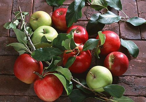 5种水果减肥效果好,有你爱吃的吗?