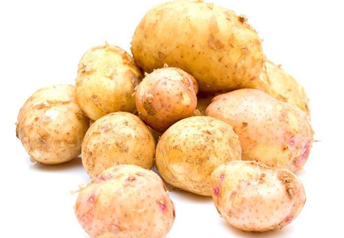 中医:5种最好的补气食物,生活中非常常见