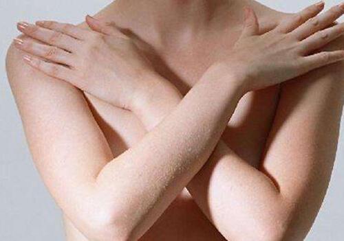 女人吃什么对乳房好?