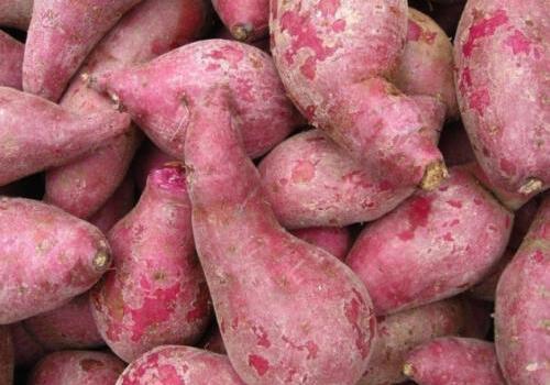 爱吃红薯的注意:红薯不能跟6种食物一起吃!