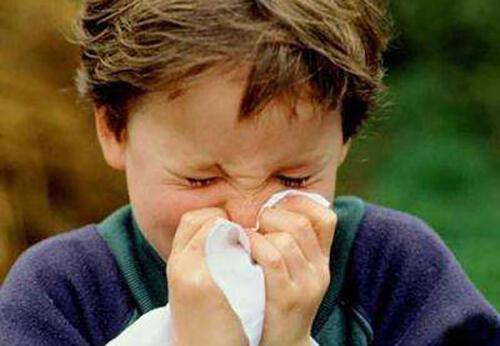 孩子总是感冒,吃什么食物比较好?