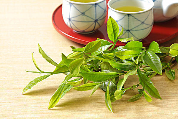 喝绿茶好处多,没事泡几杯吧