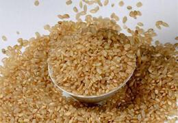 常用糙米煮饭吃,能收获这几大好处
