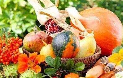 秋季该怎么吃更养生,这些小妙招必须要知道