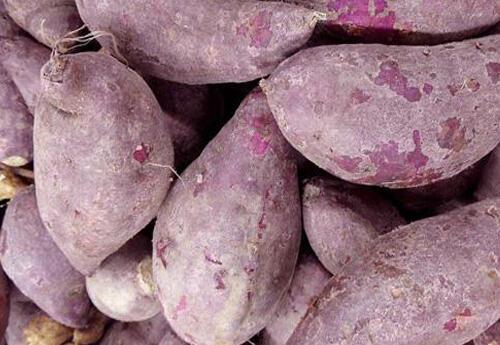 紫薯不仅好吃,还有这些作用,最后献上美味的食谱
