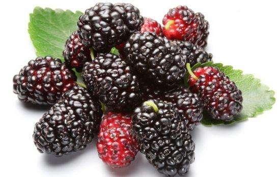 5種暖宮食物,堅持每天吃一點,幫你暖宮、養氣血